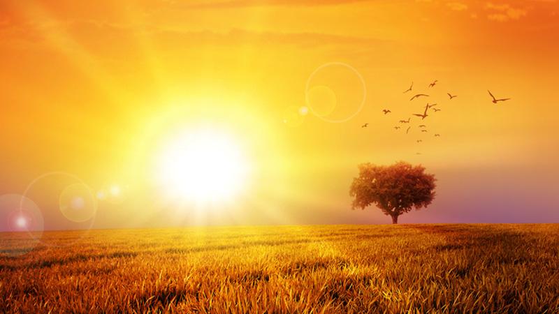 Sun In Liba