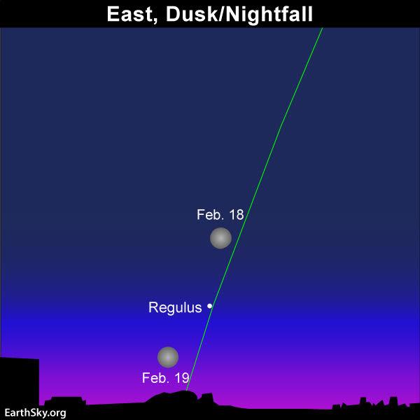 2019-feb-18-19-full-moon-and-regulus